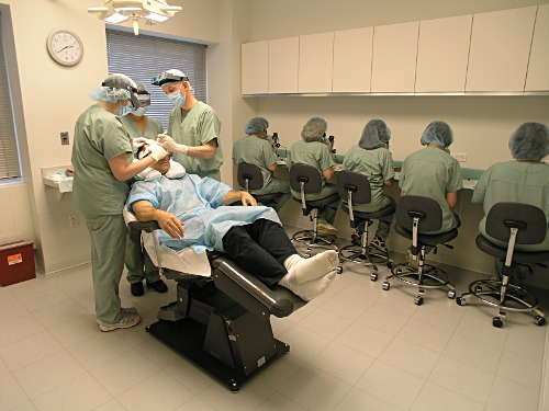 FUT Hair Transplant at Bernstein Medical